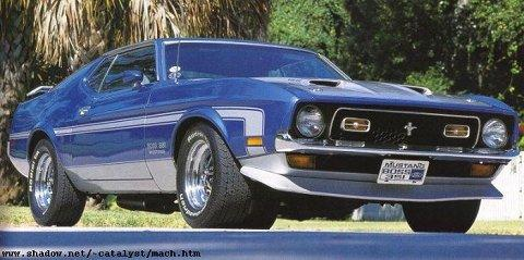 Mustang Market 1971 boss Stripe Kit